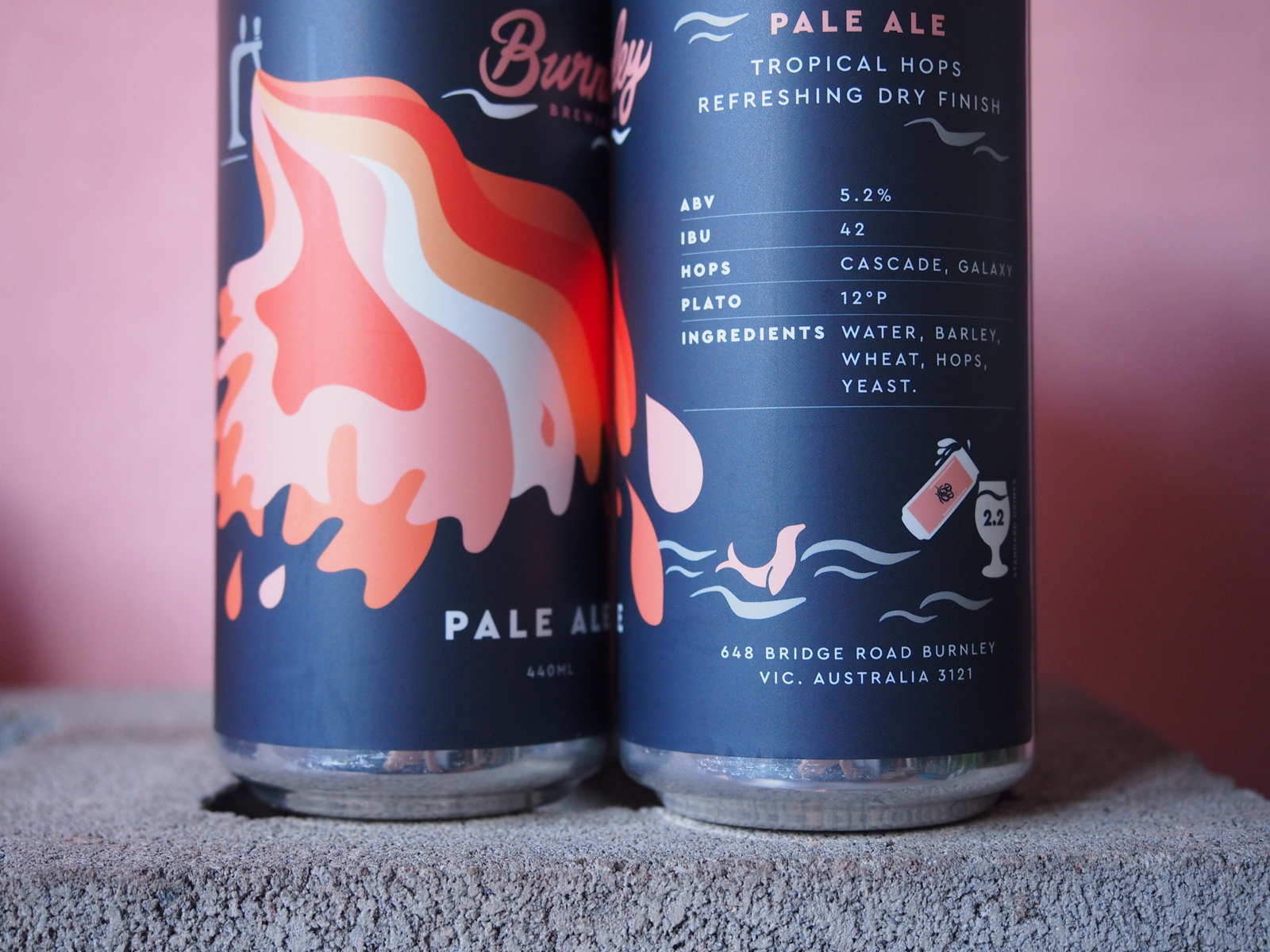 Burnley-Brewing-Pale-Ale-Can-5