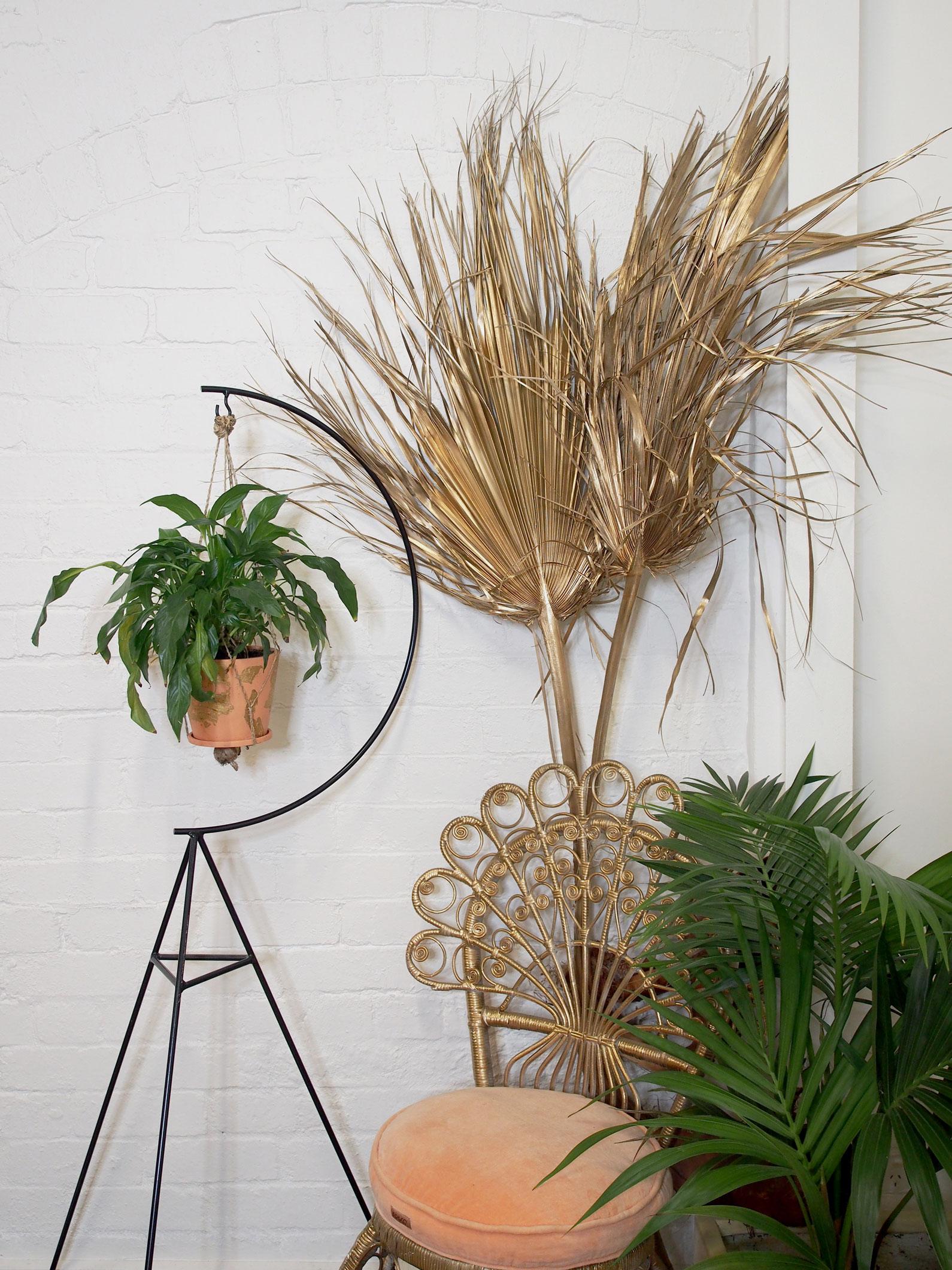 Studio-Mimi-Moon-New-Palm-Court-Orchestra-Styling-art-direction-Photoshoot-5