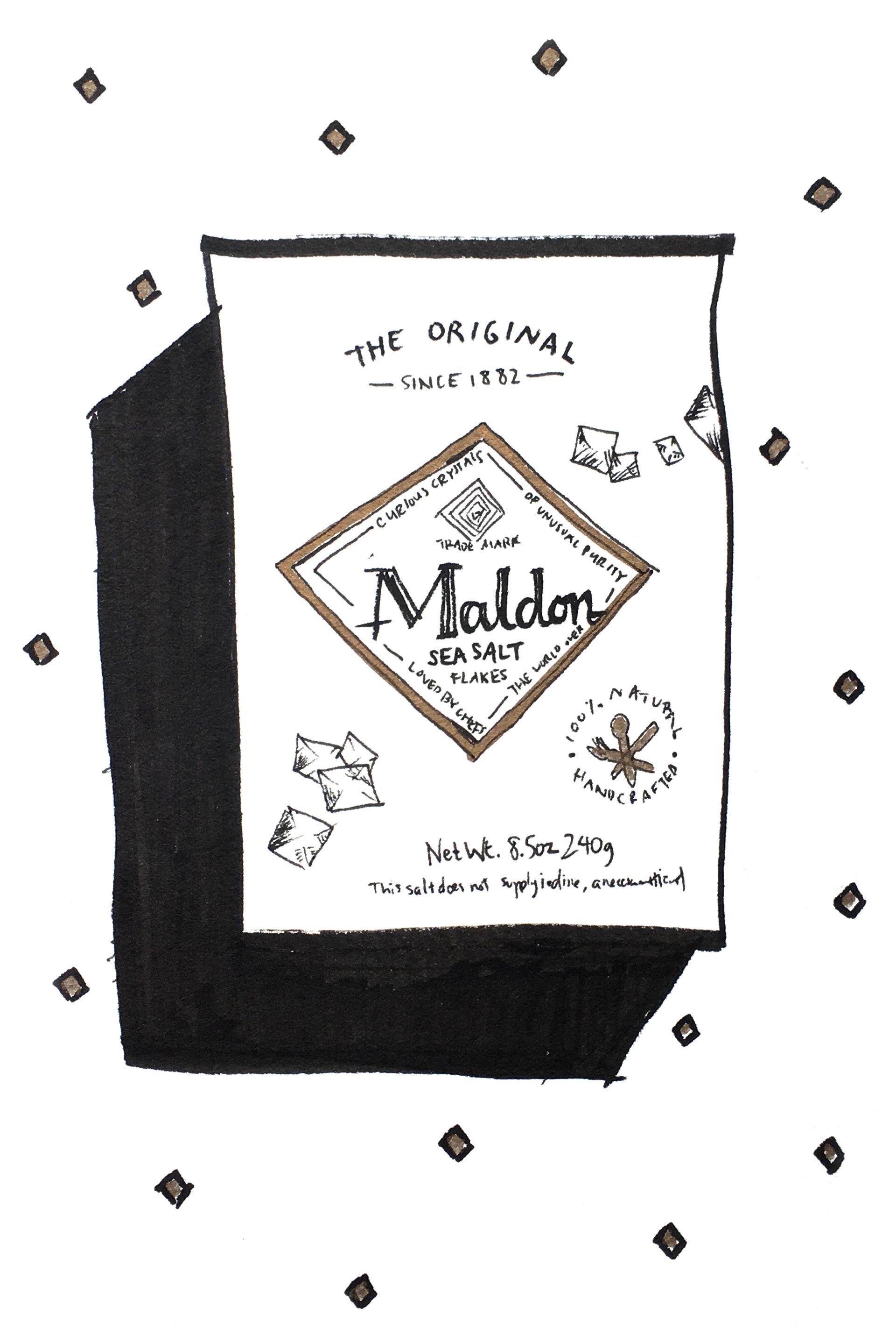 Illustration Studio Mimi Moon Miriam McWilliam NYC Sketches - Salt